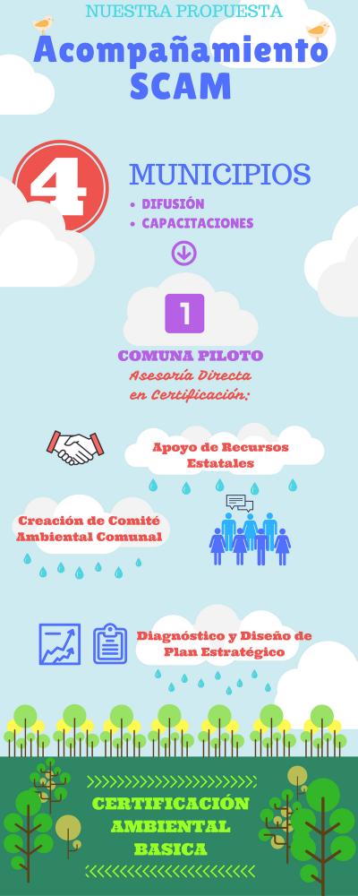 Infografia SCAM (2)